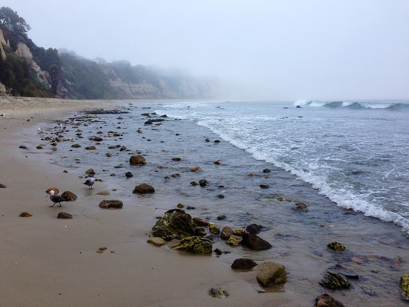 "<span id=""title"">Rocky Beach</span> <em>Point Dume SB</em> Must suck for all the surfers to get across this going to/from the water."