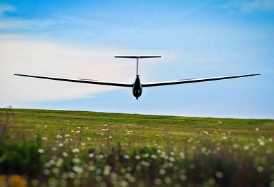 A sailplane lands at Harris Hill soaring park.
