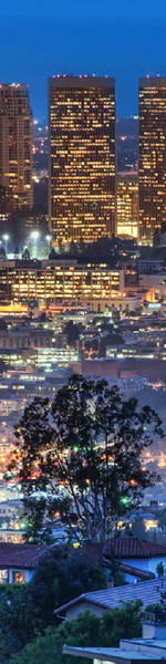 Homes in Runyon Canyon - Los Angeles