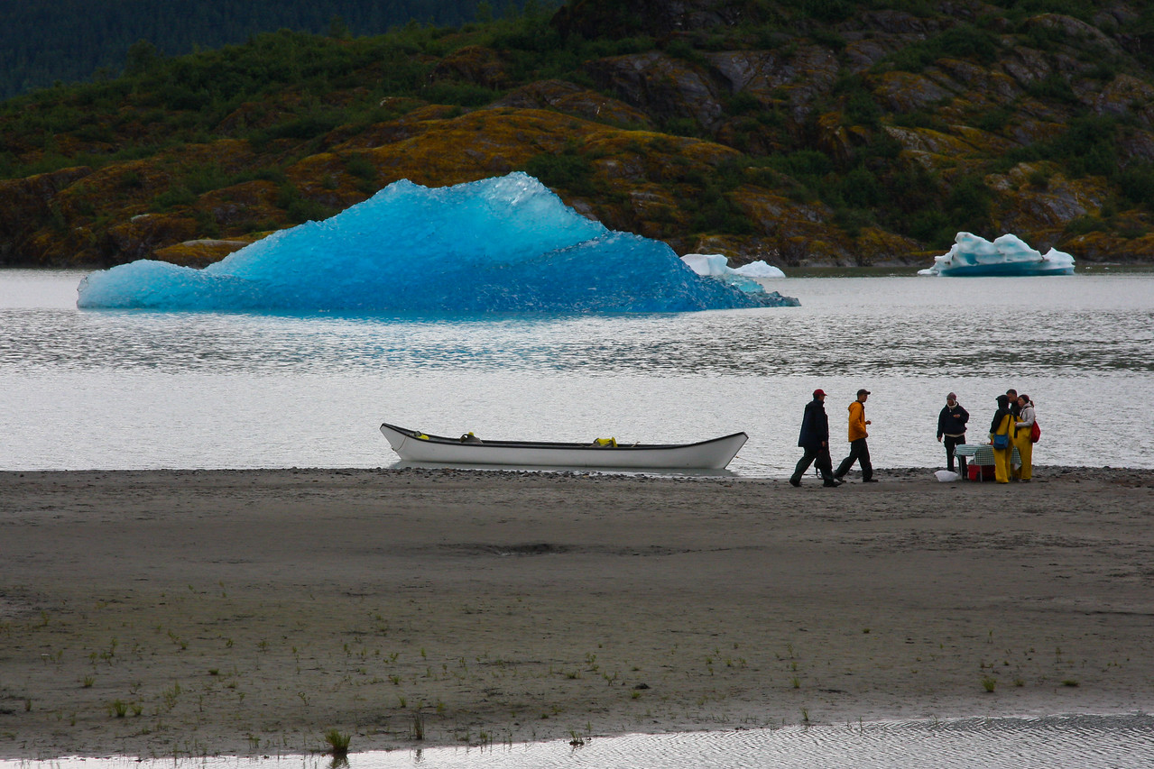 Mendenhall Glacier fresh calved ice
