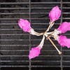 "<span id=""title"">Pink Flower</span> A silk floss tree flower on a wet metal grate near the fountain."