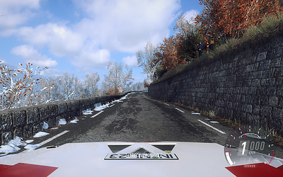 Dirt Rally 2 (not on maximum detail)