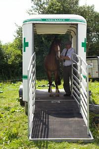 Horse-Ambulance-210714 024