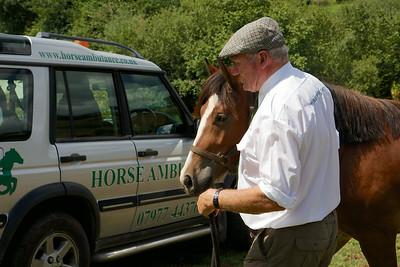 Horse-Ambulance-210714 028