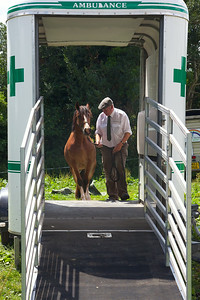 Horse-Ambulance-210714 022
