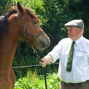 Horse-Ambulance-210714 035