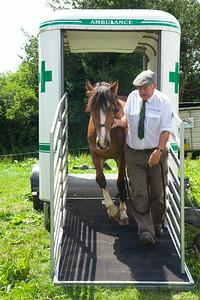 Horse-Ambulance-210714 025