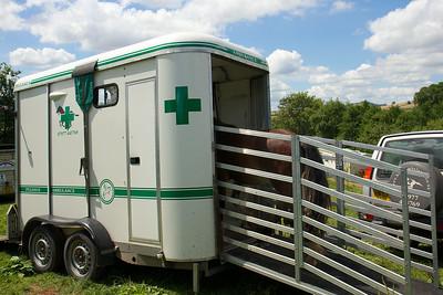 Horse-Ambulance-210714 032