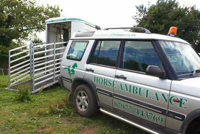 Horse-Ambulance-210714 017