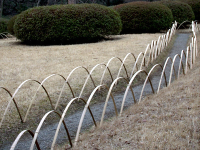 a garden path at Meiji Jingu