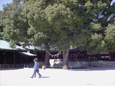 Meiji Jingu,  a Shinto shrine venerating  Emperor Meiji and  Empress Shoken.