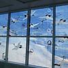Oakland Airport art