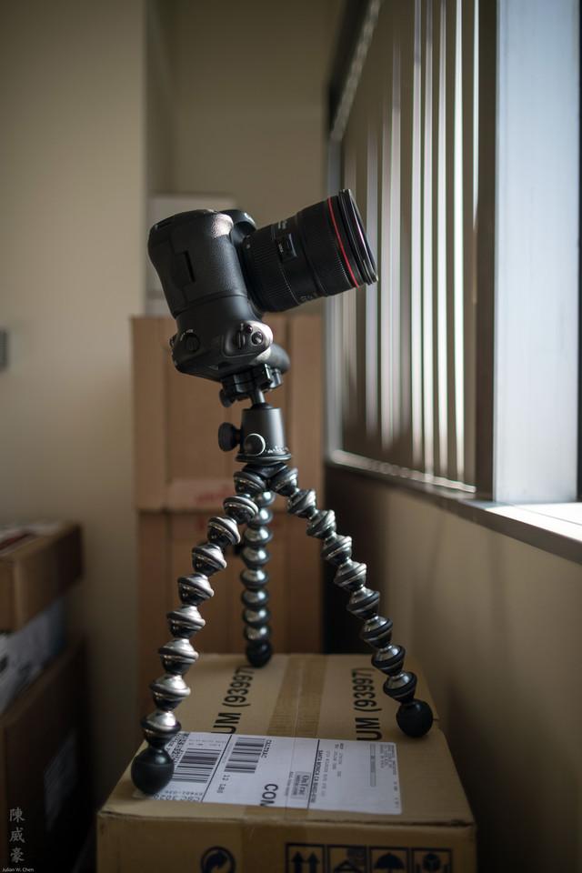 IMAGE: https://photos.smugmug.com/Misc/Lens/Canon-24L-II/i-fQHG7Bd/0/X2/20161209-Canon%20EOS-1D%20X%20Mark%20II-1DX25324-X2.jpg