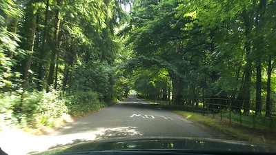 I love the tree tunnels!