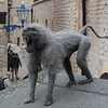 Monkey Statue at Tower of London