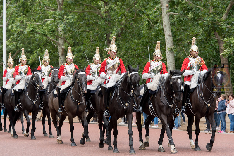 Buckingham Palace Changing of the Guards - Horse Guards