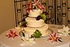 12-21-10 - Jake-Melissa Wedding-017