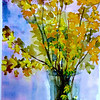 """Forsythia In A Vase 15"""" x 11"""" Sold Prints Available"""