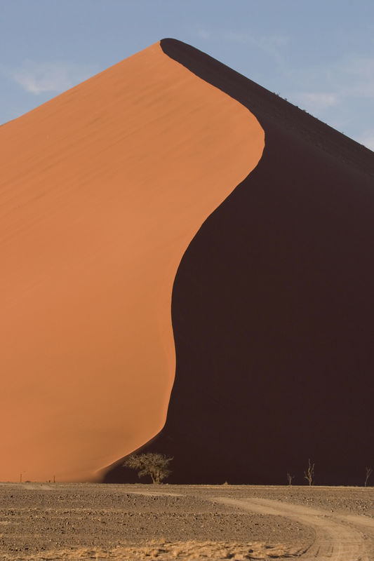 Dunes in the Namib Naukluft Park, Namibia