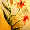 """Day Lilies 15"""" x 11"""" Price: $150. Unframed"""