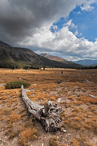 CA-Yosemite-02