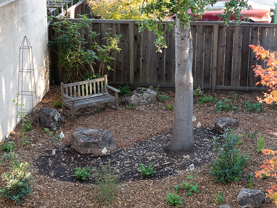2016 Garden Remodel