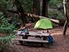 Thursday, April 18.  Villa Creek Camp.  Even nicer in the morning light.