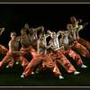 Kong Fu performance
