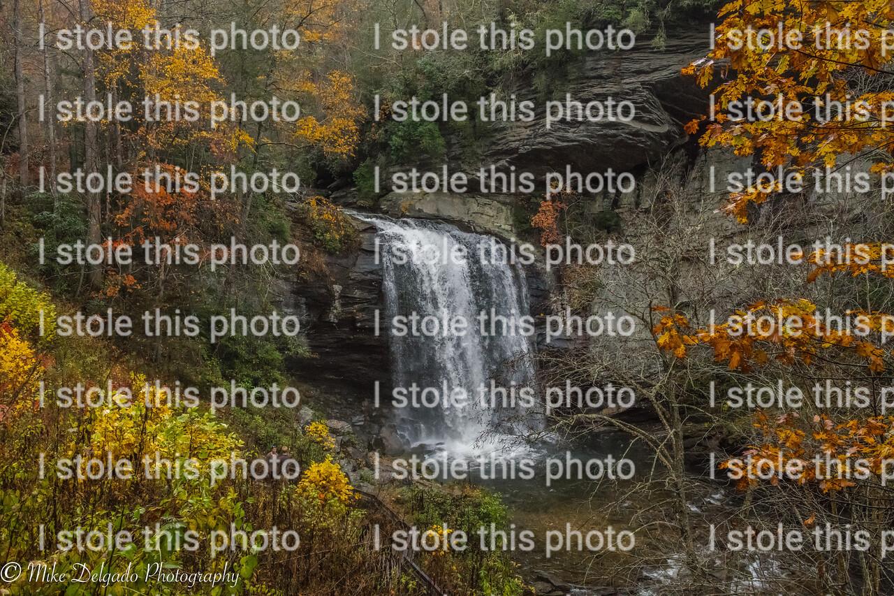 Looking Glass Falls   Nikon D850 ISO 6400