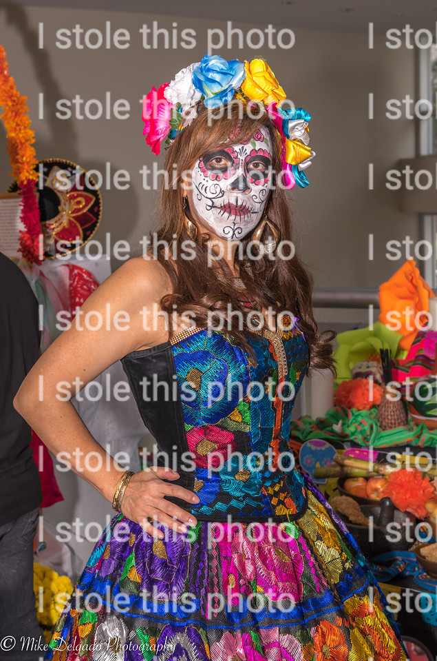 Day of the Dead IS0 800