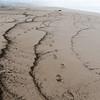 "<span id=""title"">Beach</span> Interesting patterns of wave deposits."