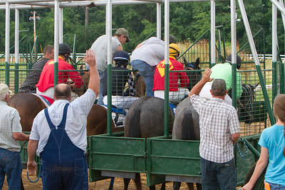 Horse Races - June 17, 2013