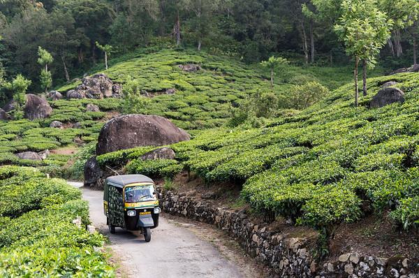 Autorickshaw in Munnar Tea Plantation