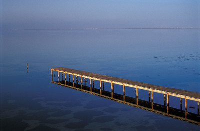 Wooden Pier Reflected in Water, Djerba