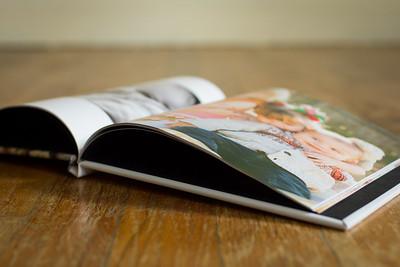 Gingersnap Book