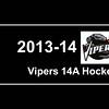 2013-2014 Vipers hockey