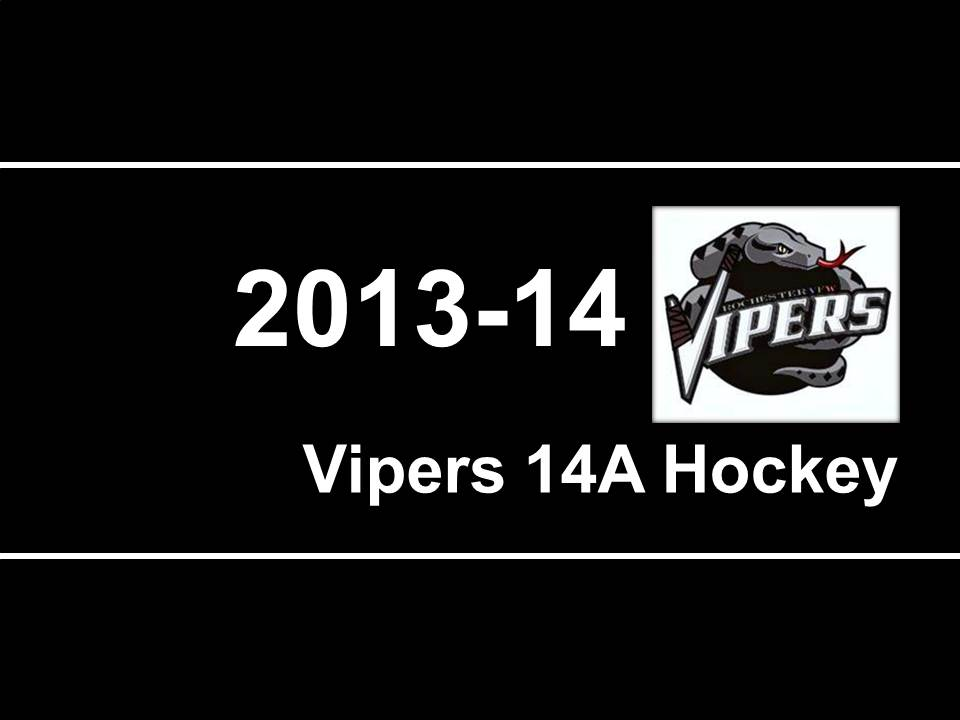 2013-2014 Vipers hockey