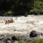 Indigo Creek - Upper Klamath