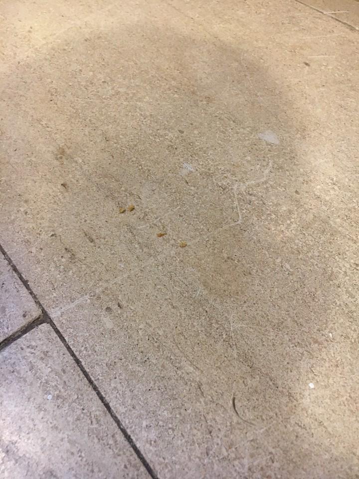 Kitchen - Scratches on Floor 3 of 9
