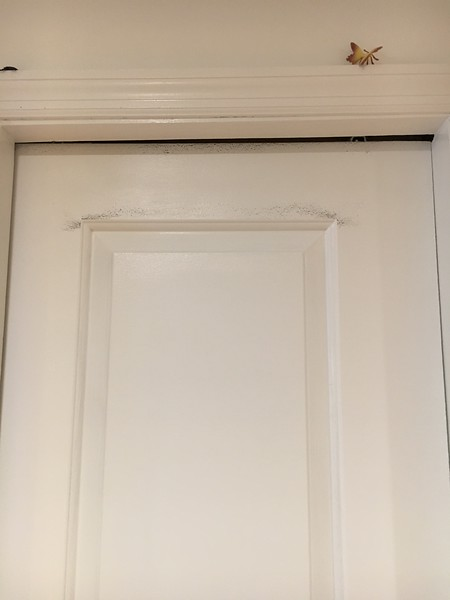 Door rubs wall; Scuff Marks; Uneven Trim