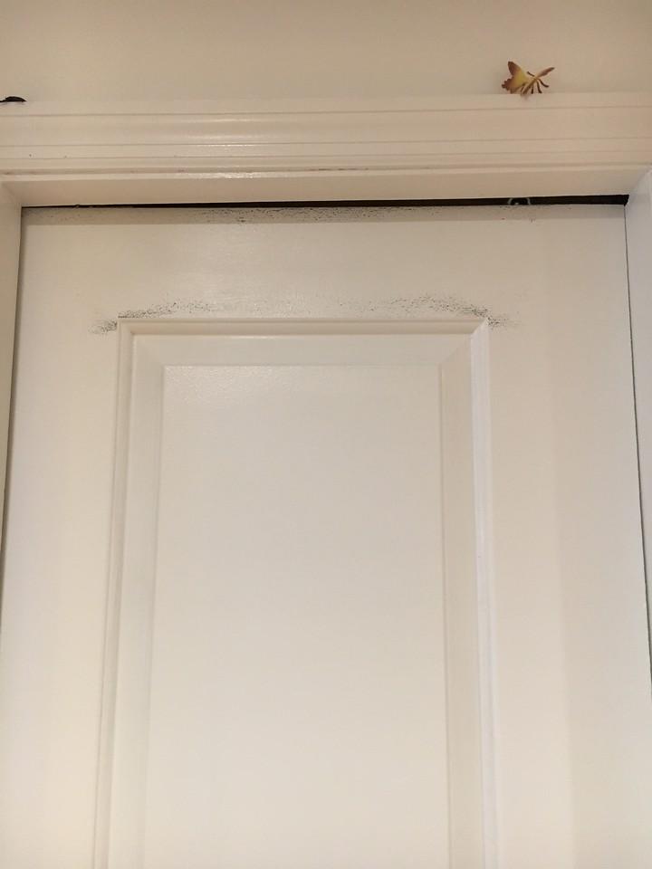 Door rubs wall; Scuff Marks; Uneven Trim