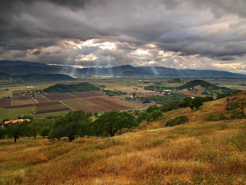Storm Breaker - Rector Ridge overlooking Napa Valley
