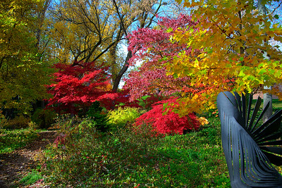 Garden at U?nitarian Church
