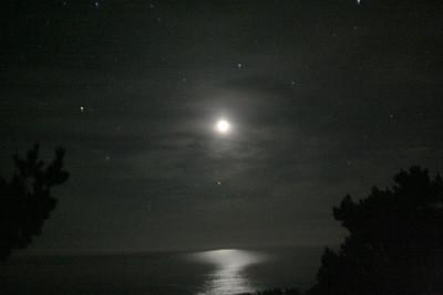 sarah-lunar