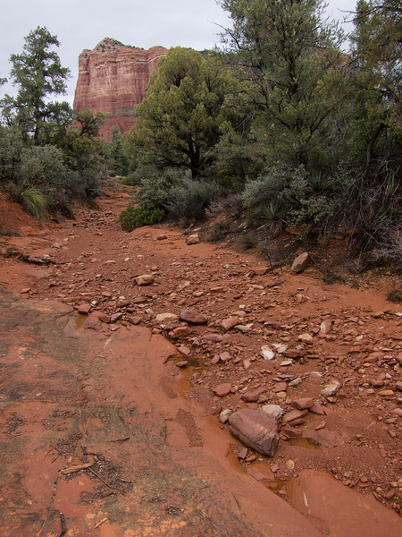 "<span id=""title"">Red Wash</span> I'm sure there was water in this wash the day before when it was raining. Courthouse Butte is in the distance."