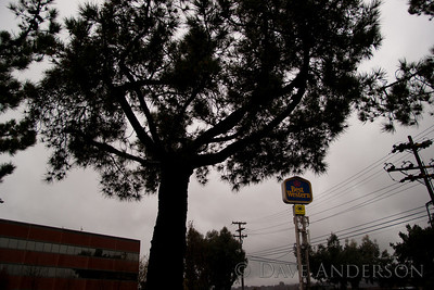 "Assignment: Take photo with theme ""Travel"""