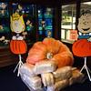 d/l  of Snoopy's Home Ice Santa Rosa CA