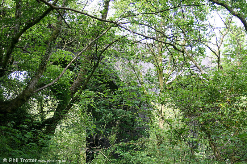 It is difficult to get an overall view of the substantial viaduct intended to carry the east curve at Gwaun Cae Gurwen because it is now largely overwhelmed by trees. However, some idea of the scale of the structure may be seen by peering through the undergrowth in this view, taken on 20th May 2007.