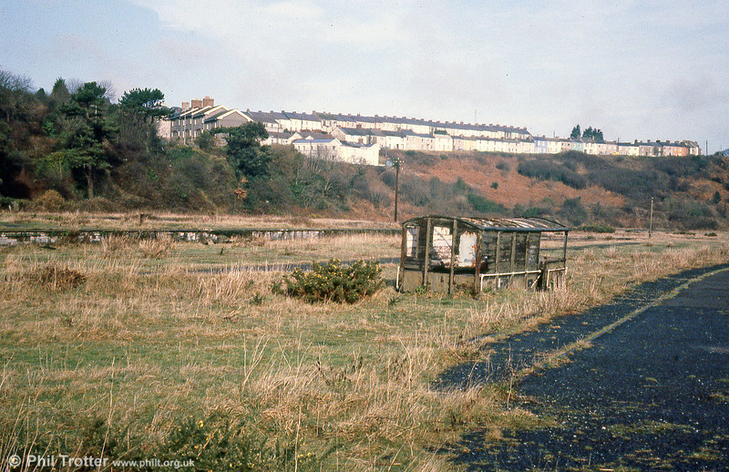 The site of the once-extensive station at Neyland, photographed on 16th February 1980. The body of GWR 'Toad' brakevan no. 68860 lies on the formation.
