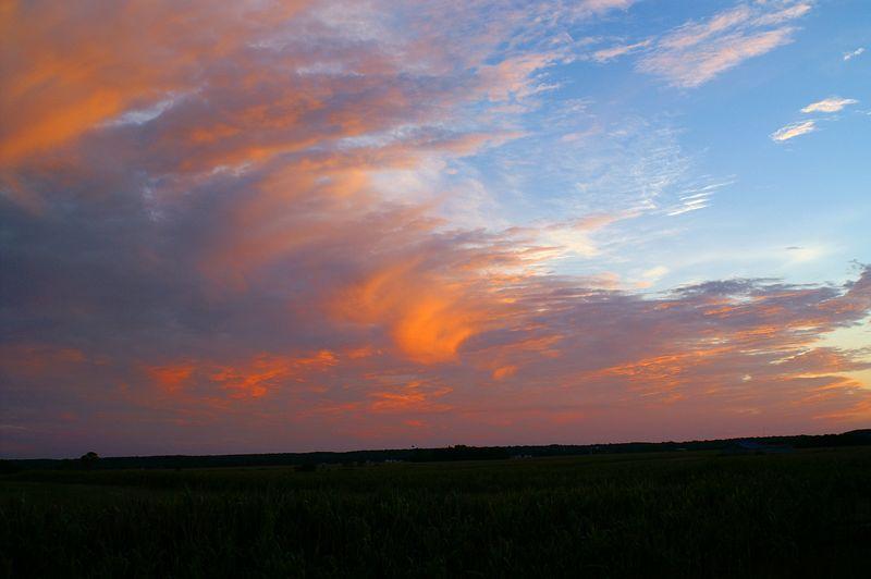 Sunset over Iowa Corn Field